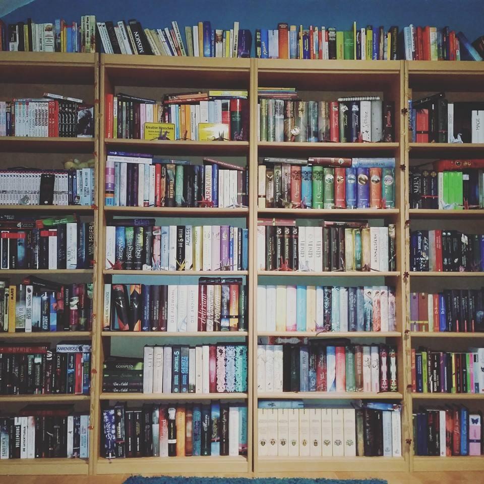 Mein Regenbogenregal 3 Die Literatouristin