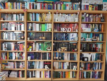 Mein aktuelles Bücherregal